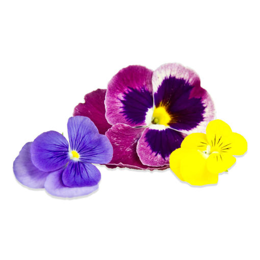 Picture of Edible Flowers - 30g