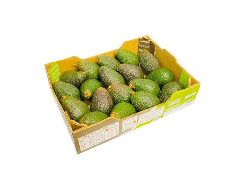 Picture of Avocado - Box (HASS)