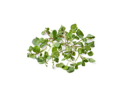 Picture of Watercress  - 2 for R25