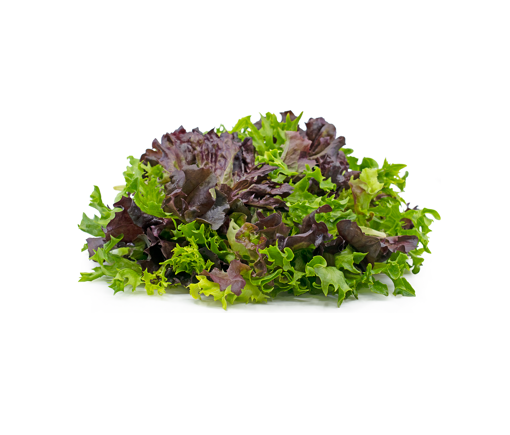 Picture of Mix Lettuce - 2 for R20