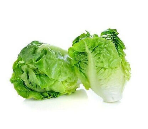 Picture of Baby Gem Lettuce - Packet