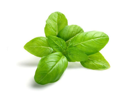 Picture of Basil - Per kg