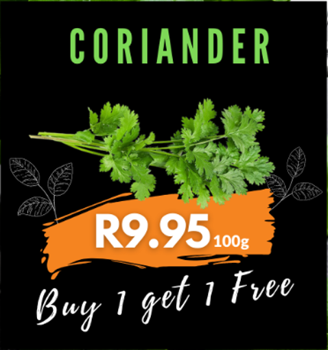 Picture of Coriander 100g - Buy 1 Get 1 Free