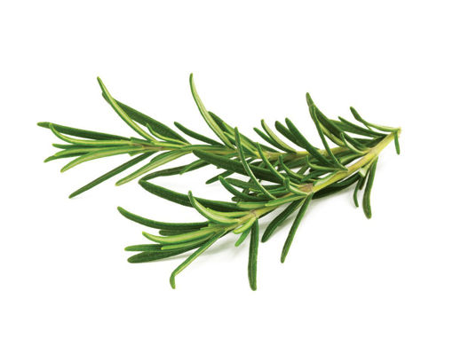 Picture of Rosemary - Per kg